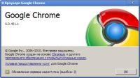 Google Chrome 6.0.472.33