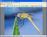 XnView 1.97.7 Complete version