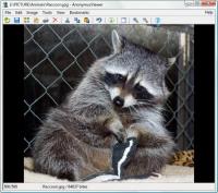 AnonymusViewer 1.0.3