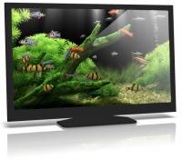 Dream Aquarium Screensaver v 1.234 Final на русском