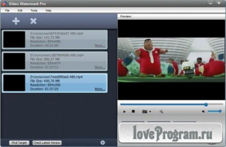 Video Watermark Pro 3.0