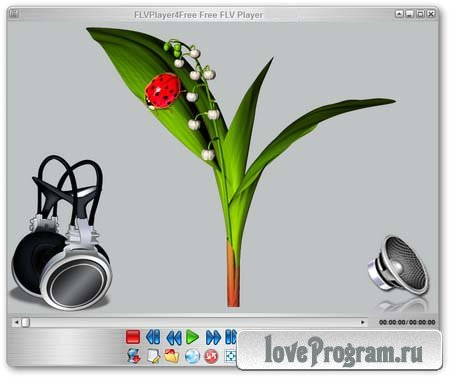 FLVPlayer4Free 5.3.0.0 ML/Rus Portable