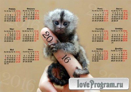 Красивый календарь — Маленькая обезьянка