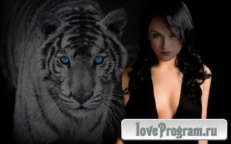 Шаблон для фото - Тигрица