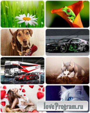 Wallpapers Mixed Pack 71